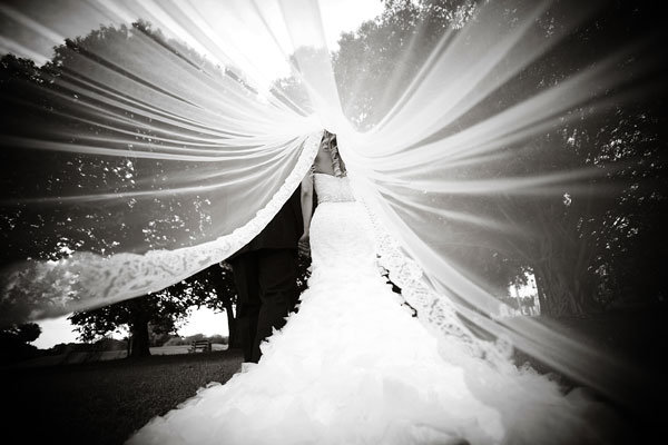 gorgeous veil photo