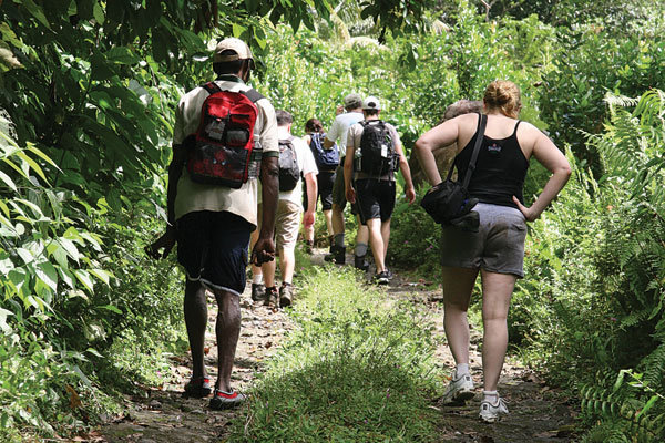 dominica hiking trail
