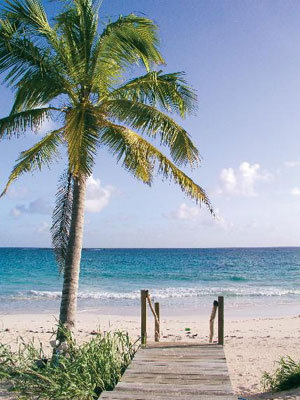 eleuthera honeymoon