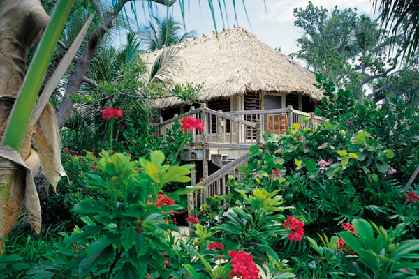 bungalow on little palm island