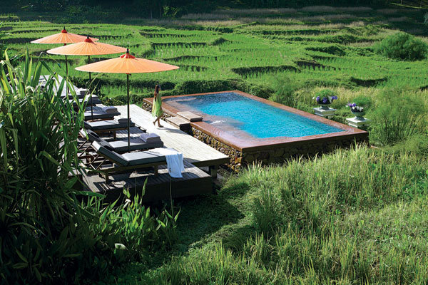 pool at the four seasons chiang mai