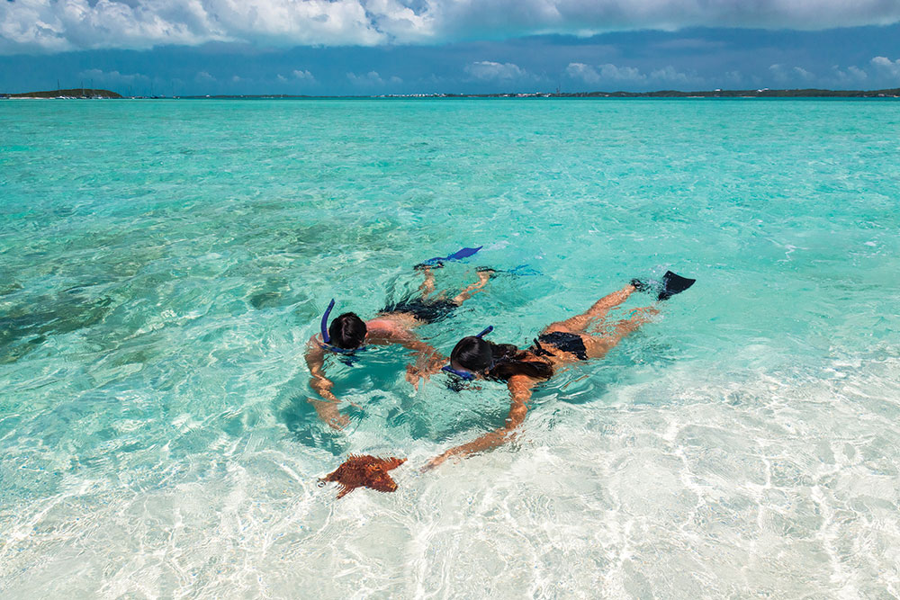 Travel Trends: Which Type of Trip is Best for You?