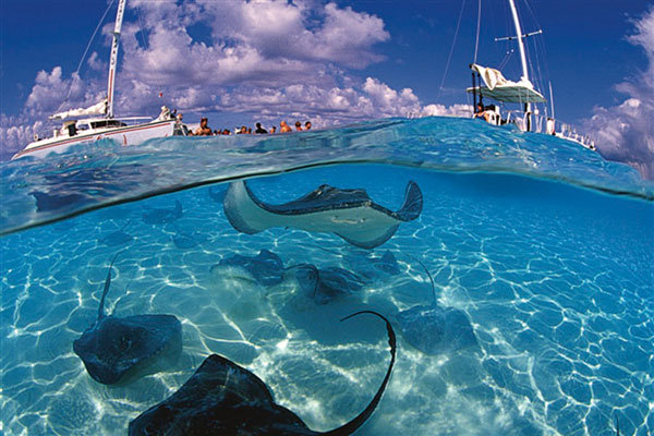 sting ray boat
