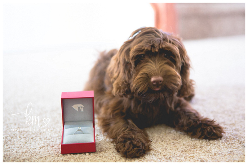 photographers puppy proposal