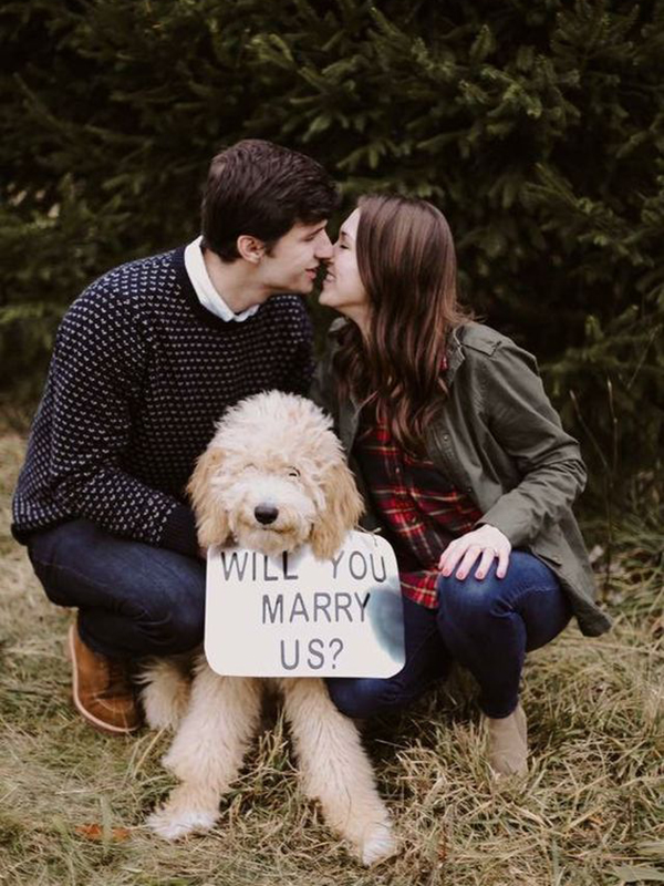 puppy proposal with sign