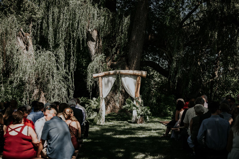 Jurassic Park Theme Wedding