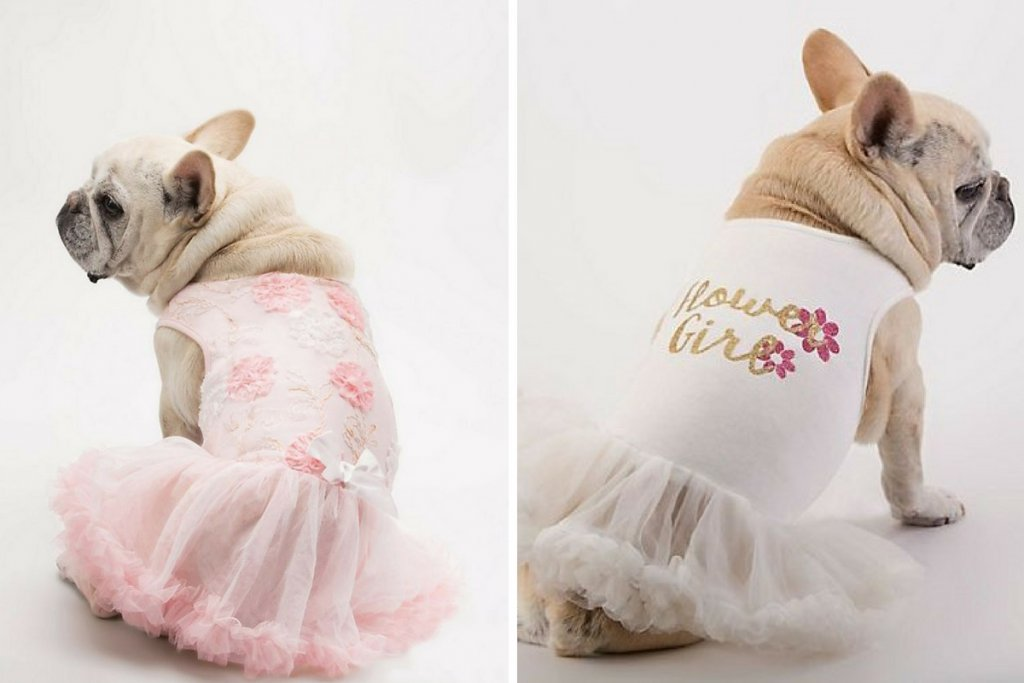 Dogs in Flower Girl Dresses