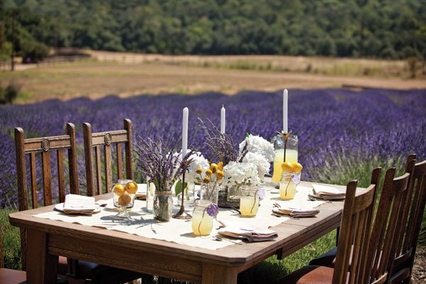 table setting field