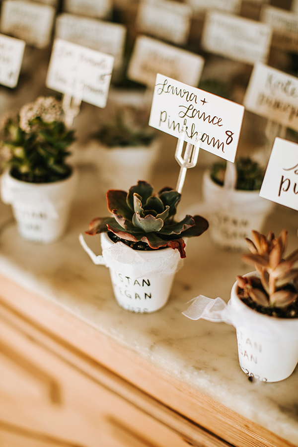 Succulent wedding escort cards
