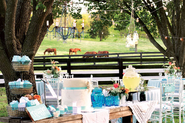 wedding on a pasture