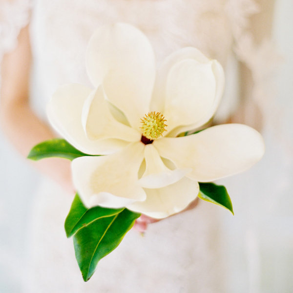 September Wedding Flowers In Season: 50+ Ideas For Your Bridal Bouquet Page 31
