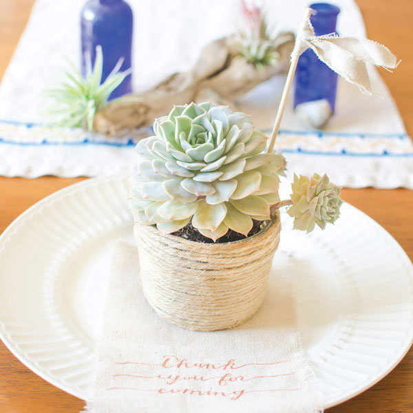 mason jar succulent wedding favor