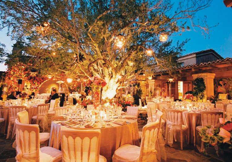 Country style wedding reception home decorating ideas for Outdoor wedding reception ideas