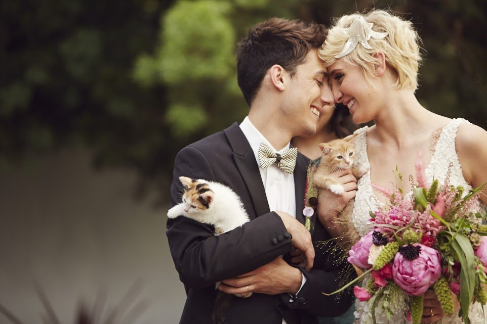 cat theme wedding