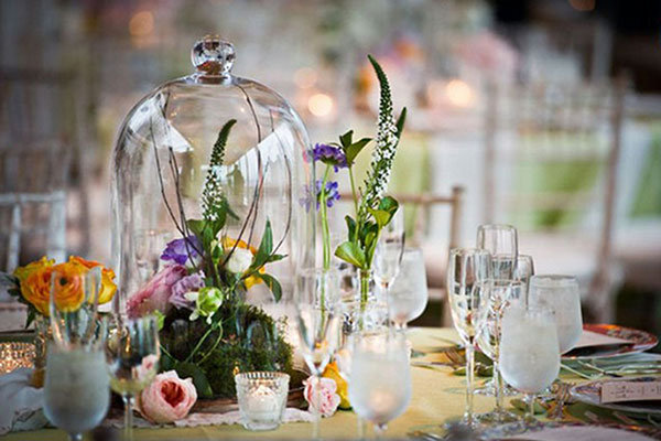 How to grow your own wedding flowers bridalguide