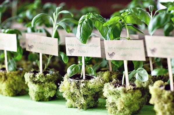 moss wedding favors