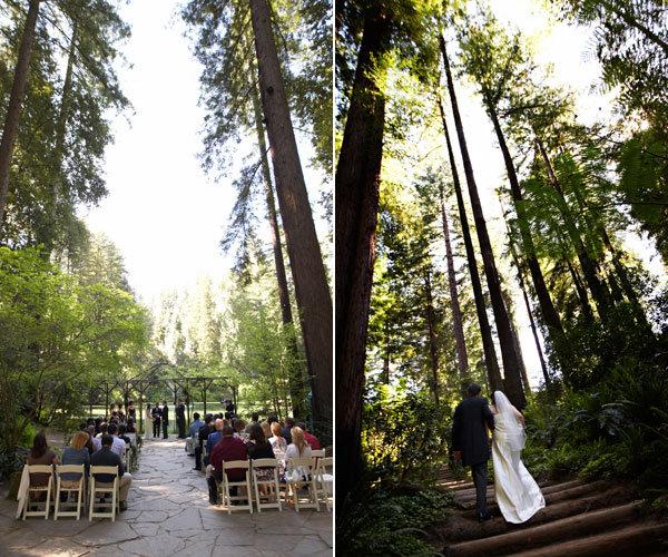 harry potter wedding forbidden forest