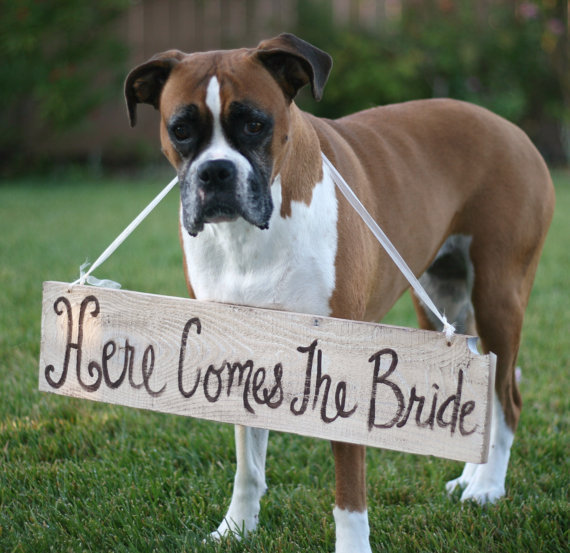 here come sthe bride sign