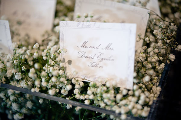 babys breath escort cards