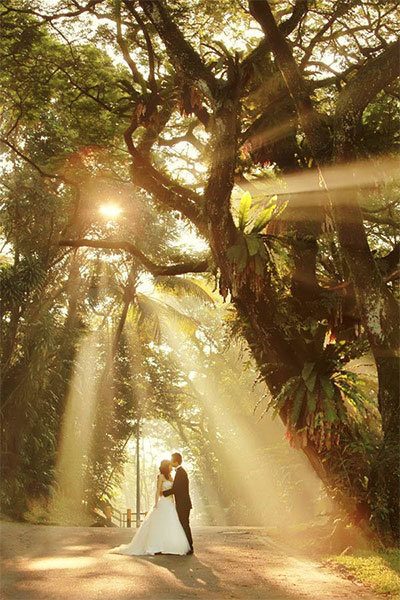 bride and groom with sunlight through the trees