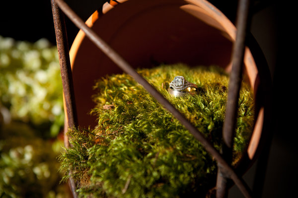 wedding rings with greenery