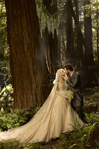 sean parker alexandra lenas wedding