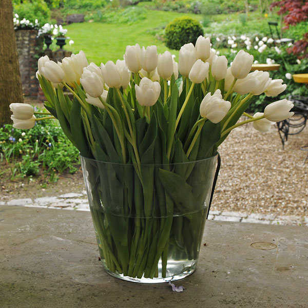 diy tulip centerpiece