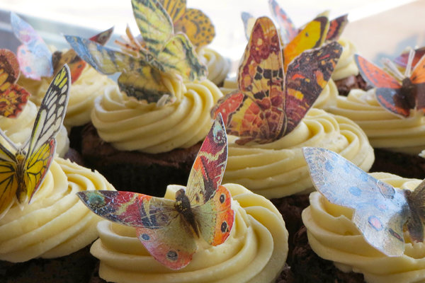 whimsical butterfly cupcakes