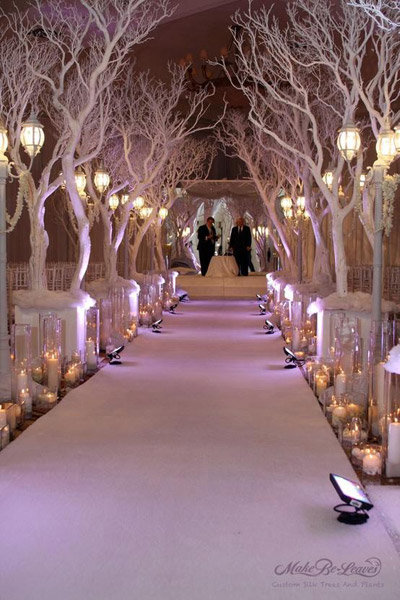 ballroom tree winter wedding