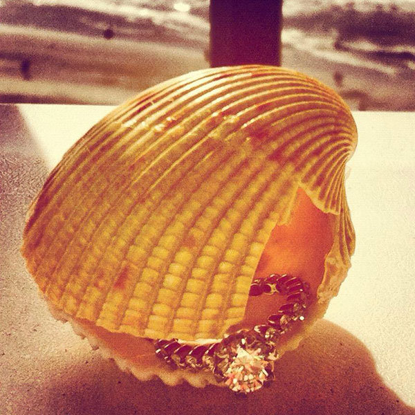 seashell proposal