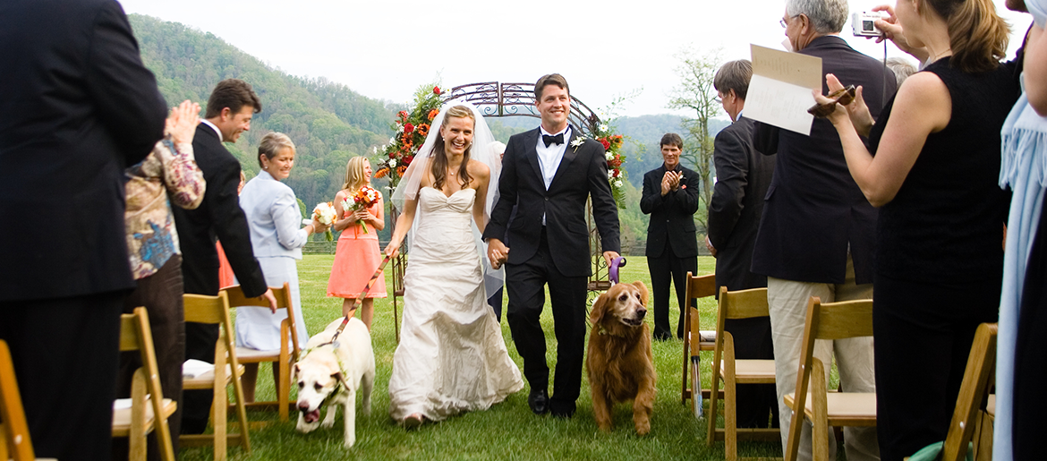 Southern Wedding Insipration in Asheville, NC