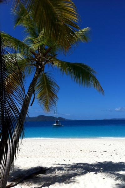 The British Virgin Islands: Jost Van Dyke