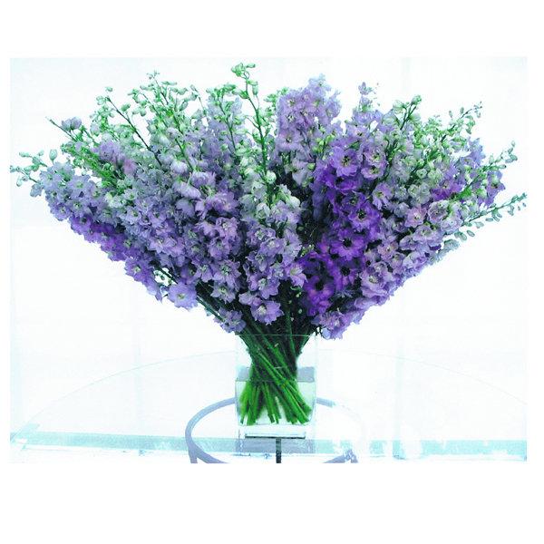 flowers in season november bridalguide