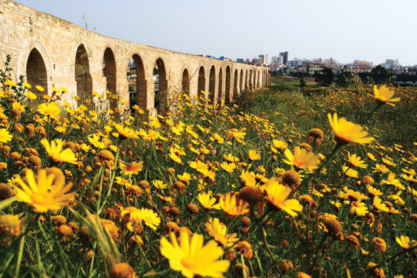 Mediterranean Feast: Cyprus