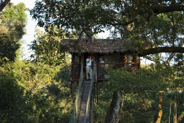 Inkaterra Canopy Tree House at Inkaterra Reserva Amazonica in Tambopata, Peru