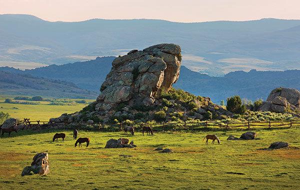 Allison Williams & Ricky Van Veen: Wyoming