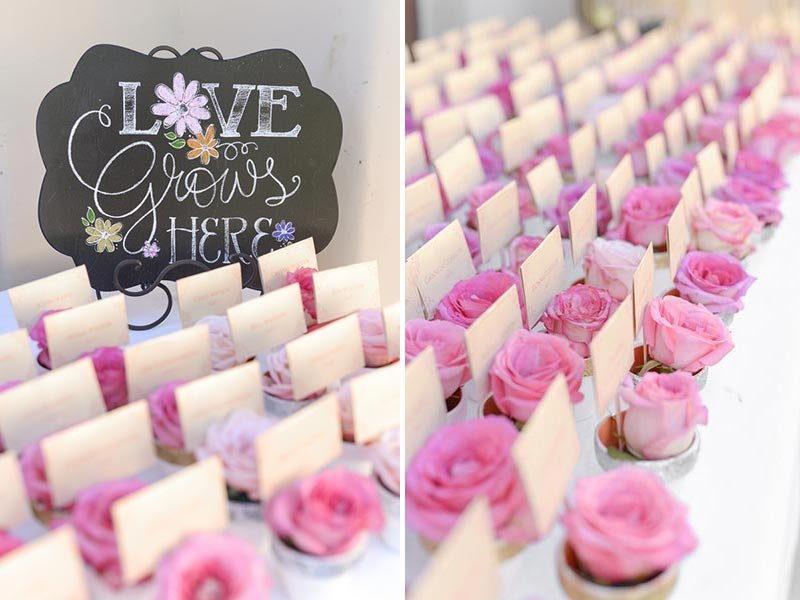 Escort Card Displays With Potted Plants