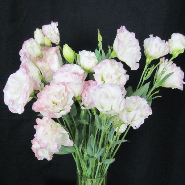 June Wedding Flower Bouquets: Flowers In Season: June