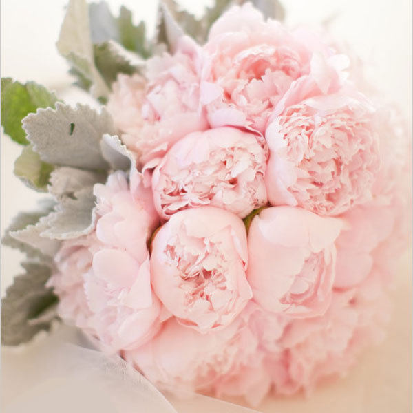 Bouquet 134970 A Soft And Pretty Peony