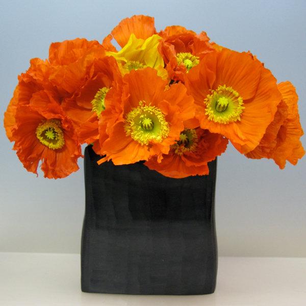 Wedding Flowers For November: Flowers In Season: December