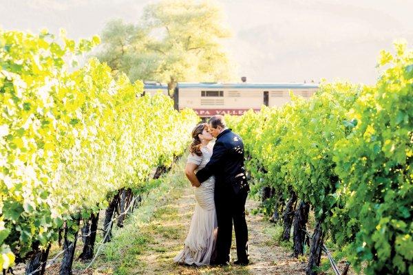 Fine Vines