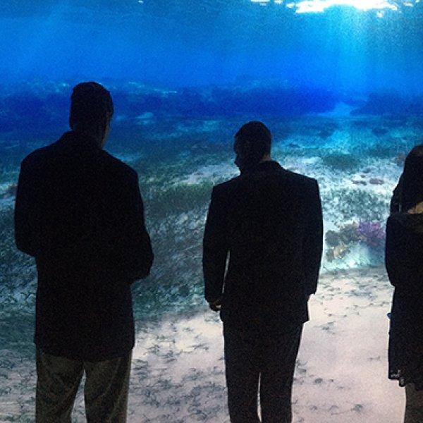 Host your wedding at NatGeo Encounter Ocean Odyssey