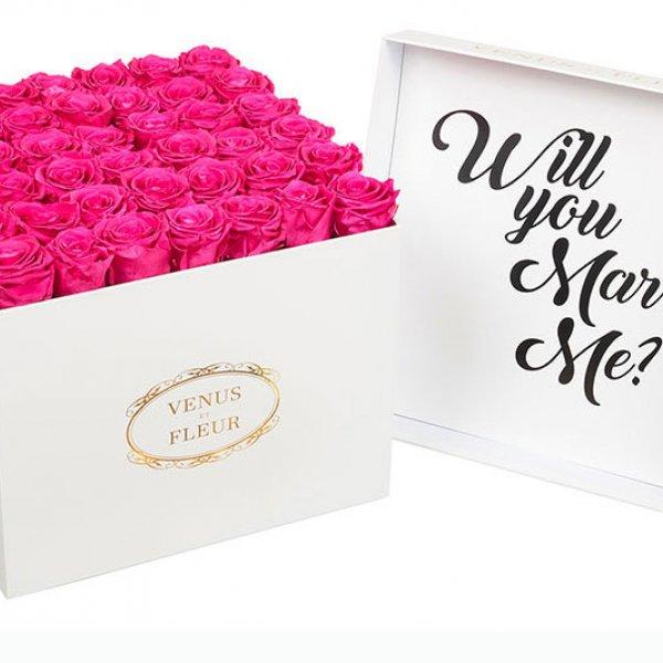 venus et fleur proposal roses