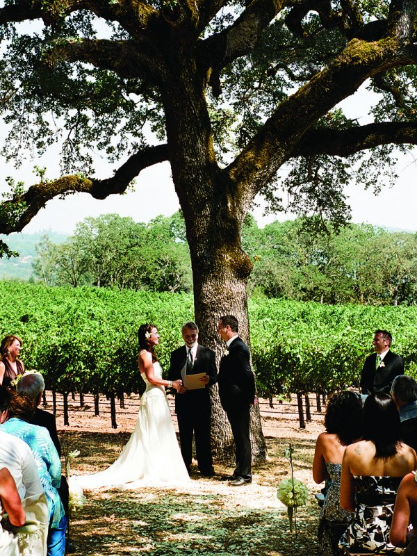 Fine Vines: Julie & Marc in Sonoma Valley, CA