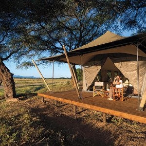 Zimbabwe honeymoon