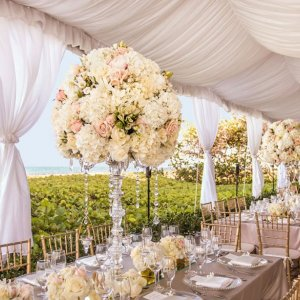 The Seagate Hotel & Spa Destination Weddings in Florida