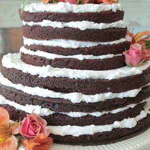 30 small wedding cakes with big impact bridalguide related articles junglespirit Images