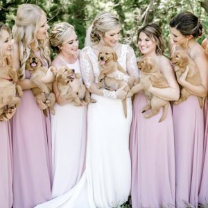 Bride and bridesmaids carrying puppies